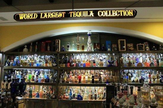 Museo Sensorial da Tequila