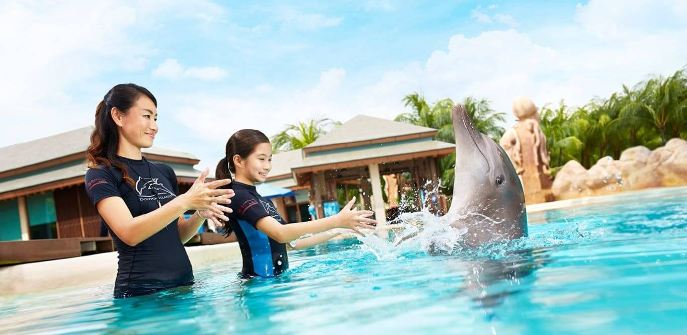 Dolphin Interactive Program en el Dolphinaris Park