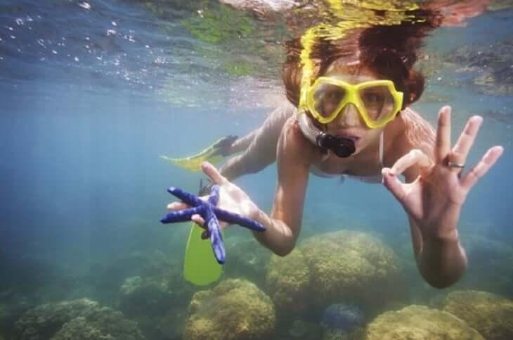 Buceo en la Isla de Cozumel en Cancún