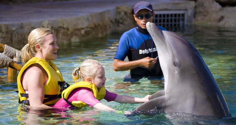 Dolphin Swim & Ride en el Dolphinaris Park