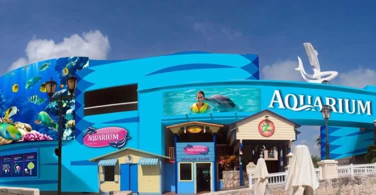 Información sobre el Interactive Aquarium Cancún