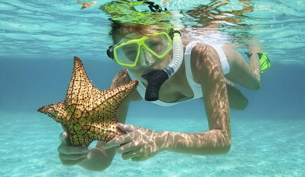Snorkel en la Isla Contoy en Cancún