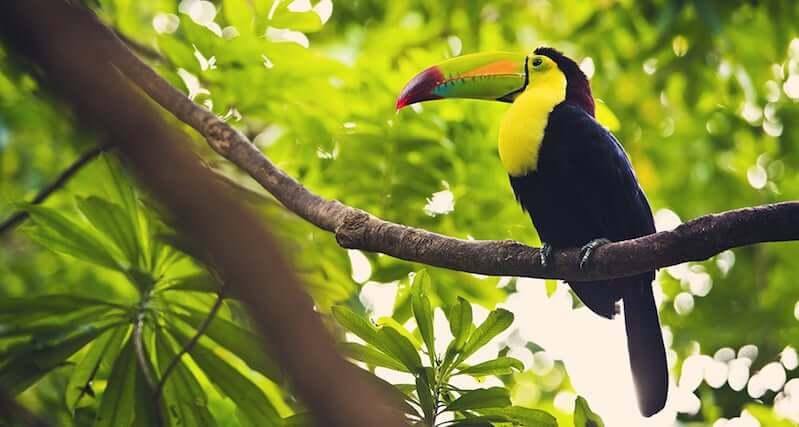 Parque Nacional de Isla Contoy